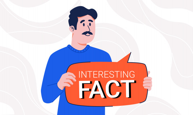 Interesting facts about shipping